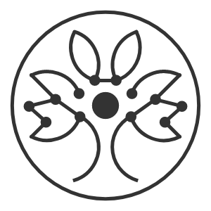Istari vision - Next Level Elrond Blockchain Projects