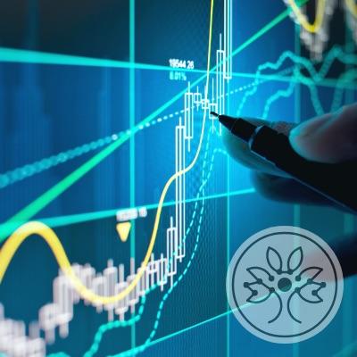 Wir arbeiten mit großen Daten- und Informationsmengen